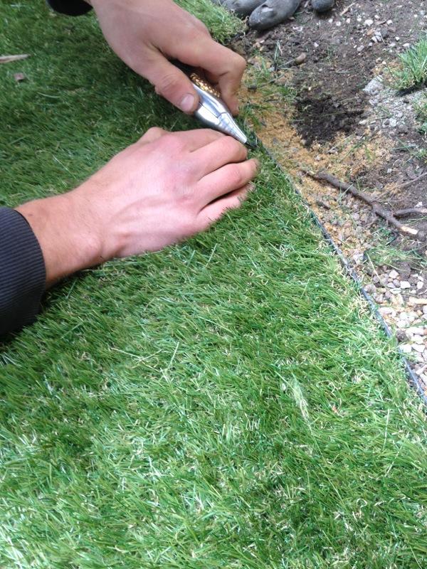 Surrey fake grass