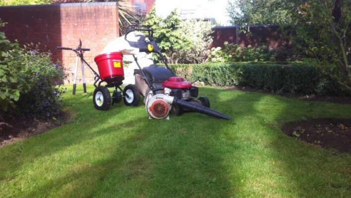 Surrey lawn care